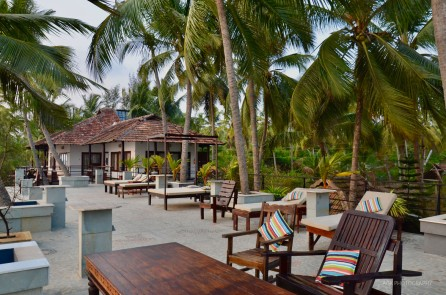 36 palms boutique retreat