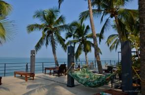 View near pool, 36 palms boutique retreat