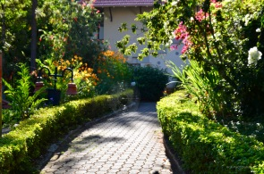 Pathway to cottages