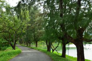 Near Karon beach