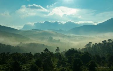 Morning mists